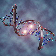 Introduction to Epigenetics-Are You Doomed By Your Family Tree?