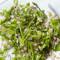 Sugar Snap Pea, Mint & Barley Salad